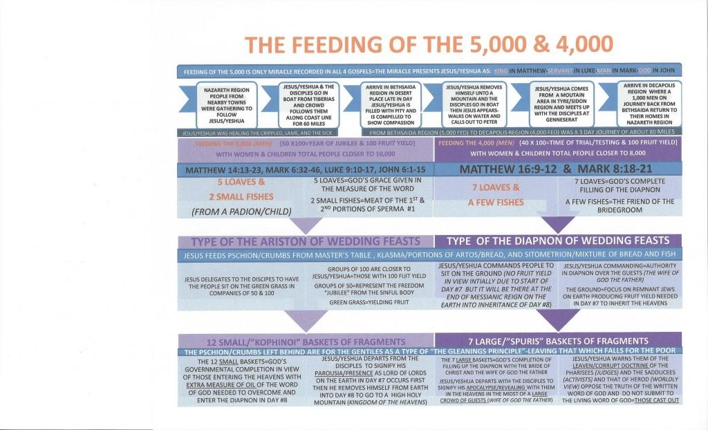 Feeding 5,000 & 4,000