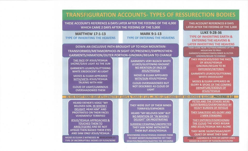 The Transfiguration Accounts